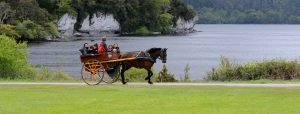 Ring of kerry tours, killarney taxi